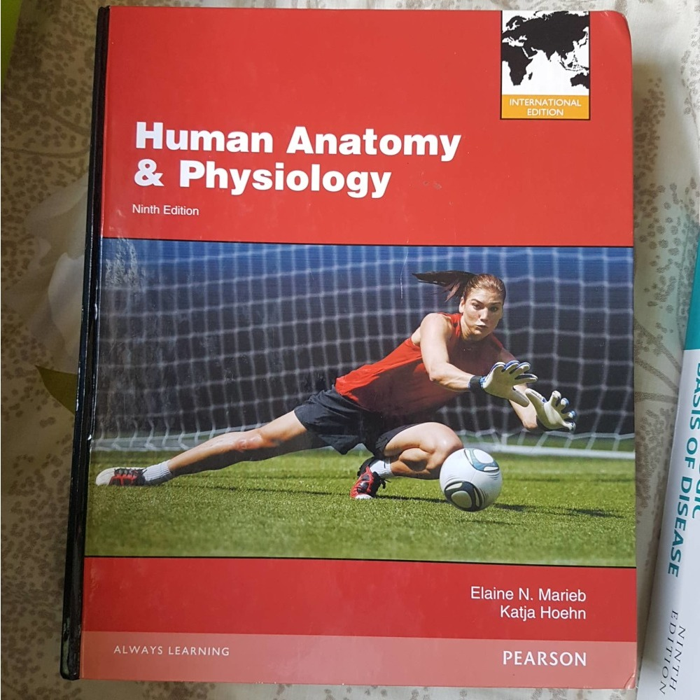 Human Anatomy and Physiology 9th Edition by Elaine N. Marieb ...